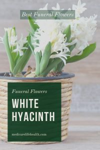White Hyacinth is one of the best funeral flowers
