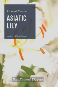 asiatic lily best funeral flowers